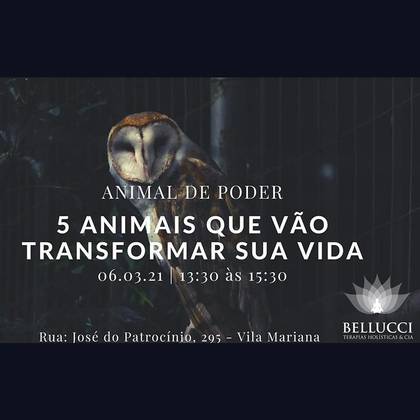 Curso:  5 Animais que vão transformar sua vida