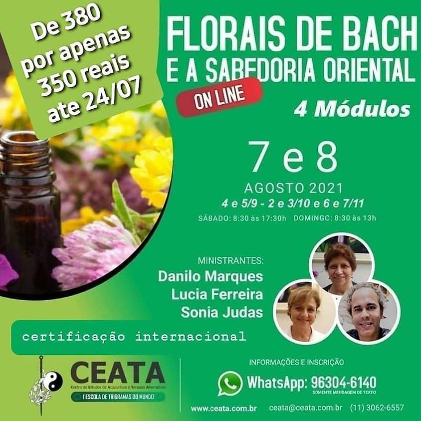 Curso Online: Florais de Bach e a Sabedoria Oriental