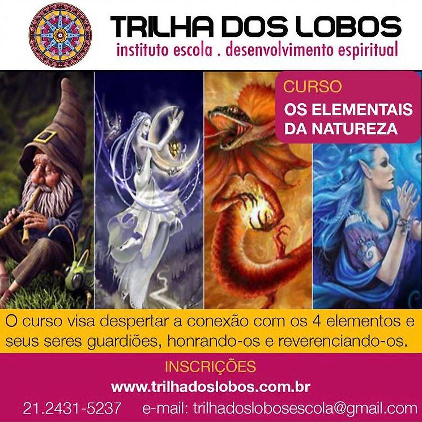 Curso Presencial ou Online:  Os  Elementais da Natureza