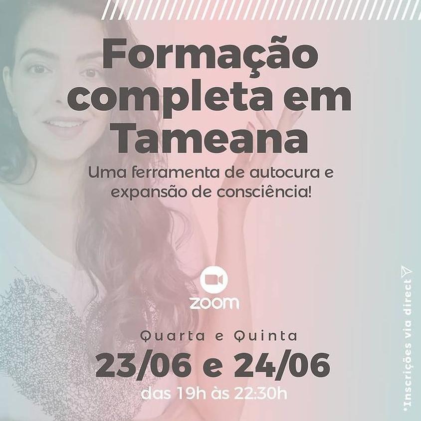 Curso Online: Formação Completa em Tameana