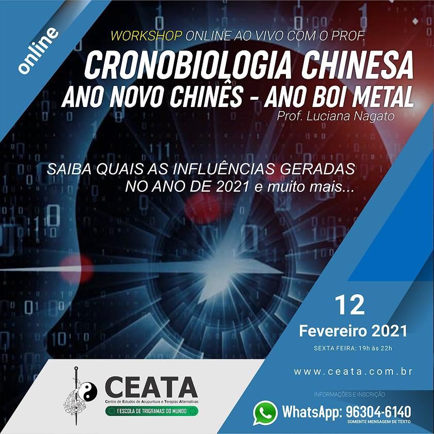 Curso Online:  Cronobiologia Chinesa - Ano Novo Chinês - Ano Boi Metal