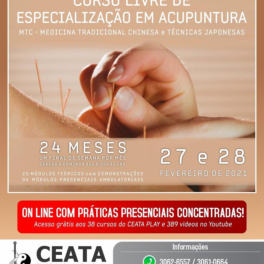 Online com Praticas presenciais: Curso livre de Especialização em Acupuntura