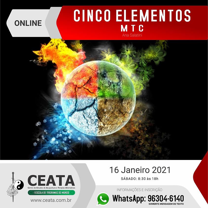 Curso Online:  Cinco Elementos MTC