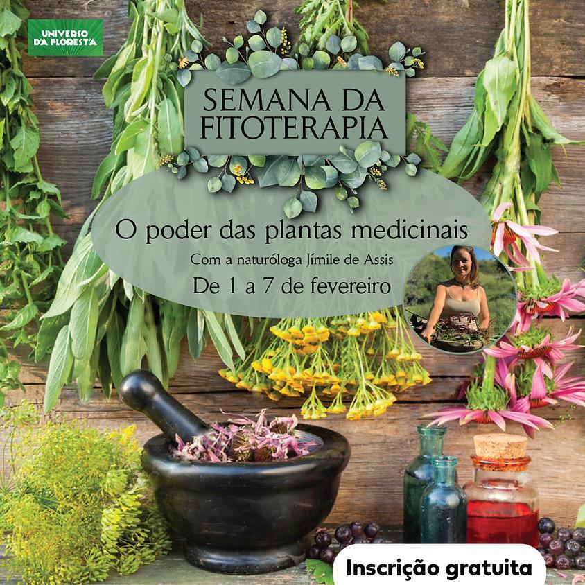 Workshop Online:  Semana da Fitoterapia - O poder das Plantas Medicinais