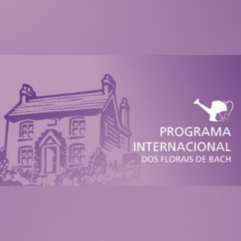 Curso Online: Programa Internacional dos Florais de Bach
