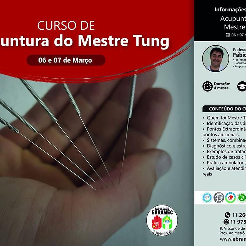 Curso: Acupuntura do Mestre Tung