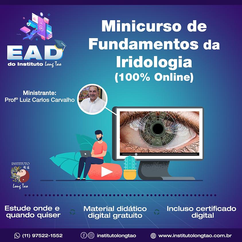 Curso EAD - Fundamentos da Iridologia