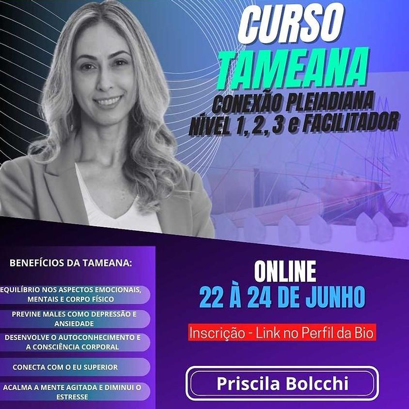 Curso Online:  Tameana - Conexão Pleiadiana Nível 1, 2, 3 e Facilitador