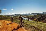 cyclists-1534907_1280.jpg