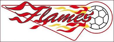 flameslogotrikotneu1_470.jpg