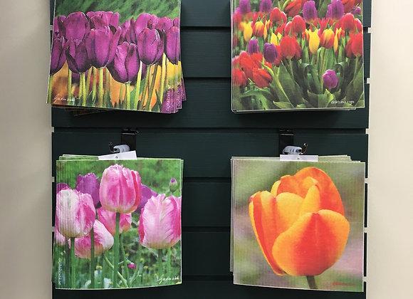 Tulip 'Swedish' Dishcloths