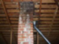 Mold is common in attics