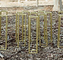 The Posie Place_Gold table stands.jpg