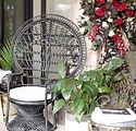 The Posie Place_Black Peacock Chairs.JPG