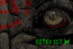 site117.2.png