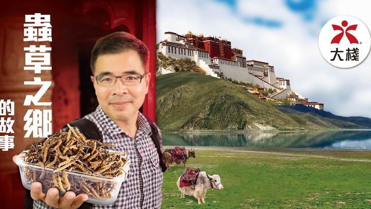 【搵食旅行團﹙上﹚】蟲草之鄉—西藏
