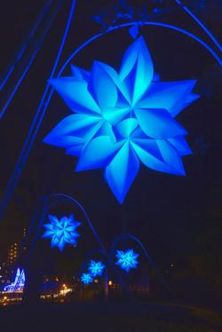 illumination[Hodogaya_Park]_37.jpg