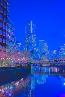 cherry_blossoms_night[Oooka_River]_54.jpg