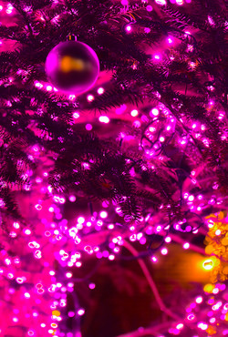 illumination[Mountain_America_Park]_27.jpg
