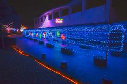illumination[Hodogaya_Park]_10.jpg