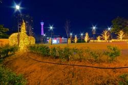 illumination[Mountain_America_Park]_20.jpg