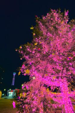 illumination[Mountain_America_Park]_21.jpg