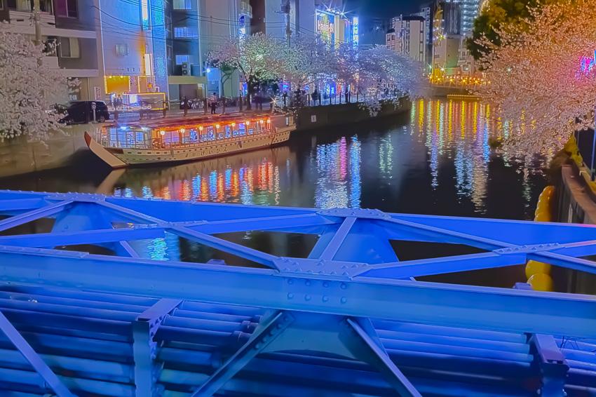 cherry_blossoms_night[Oooka_River]_29.jpg