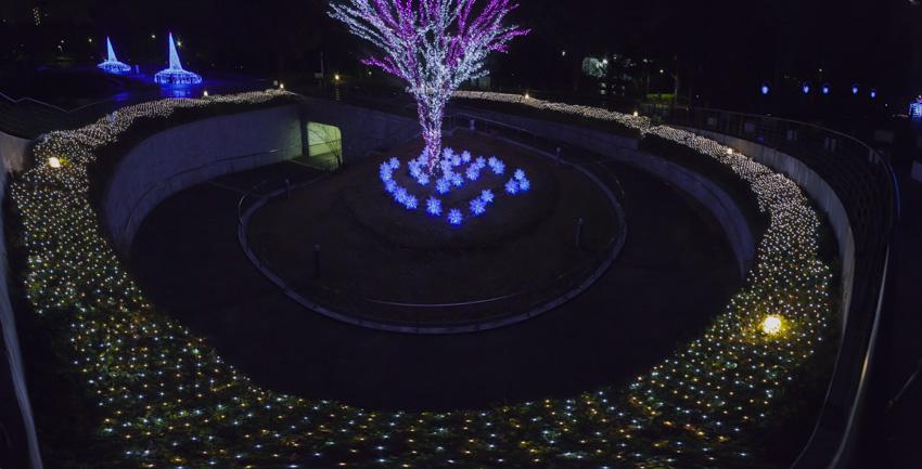illumination[Hodogaya_Park]_17.jpg