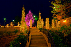 illumination[Mountain_America_Park]_18.jpg