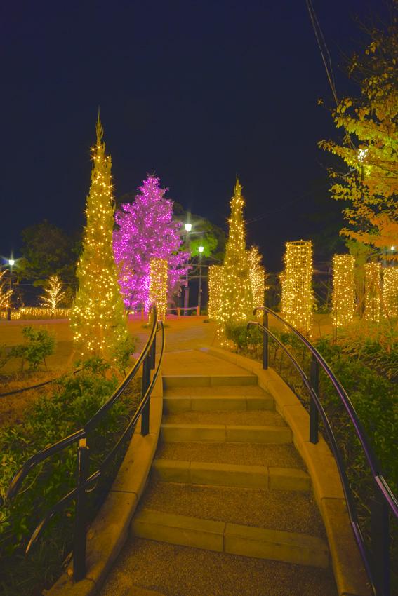 illumination[Mountain_America_Park]_19.jpg