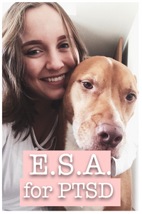 Emotional Support Animal for PTSD Alexandra (girl with dark blonde hair who is wearing a white top) smiling and holding her dog Dexter (Pitbull/Collie/Retriever mix)