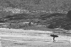 The Surfer Returns