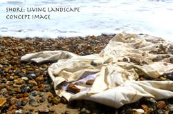 Shore:living landscape concept image