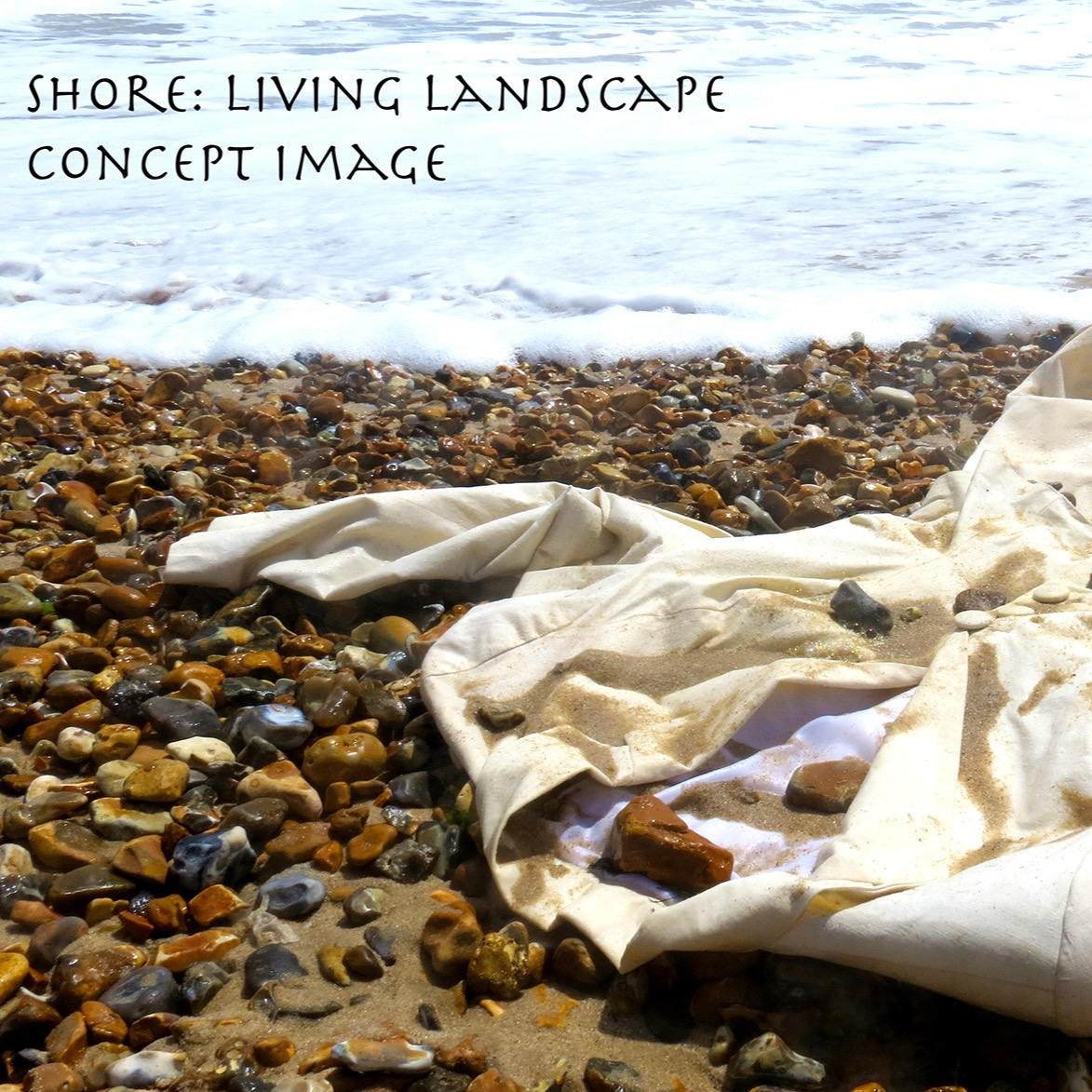 living landscape concept image_edited