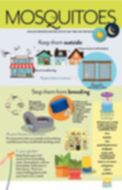 Safeguarding Against Mosquitos