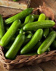 Raw Organic Mini Baby Cucumbers Ready to Eat.jpg