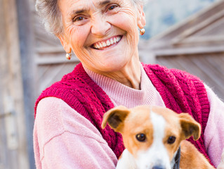 Perfect Pets for Seniors
