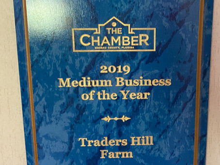 Traders Hill Farm Named 2019 Medium Business of the Year
