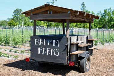 BAMMM Farms