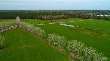 Even more barn - 1.jpg