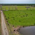 Even more barn - 2.jpg