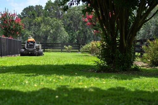 FloridaLawnCareResidential _81.jpeg