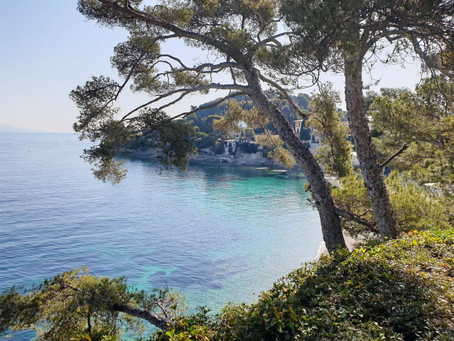 Empty Beaches of St Jean Cap Ferrat Riviera Boat Tours