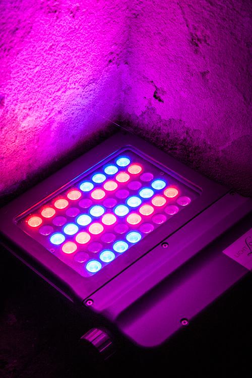 LED Farb-Lampe