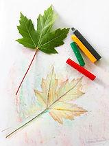 crayon leaf rubbing.jpg