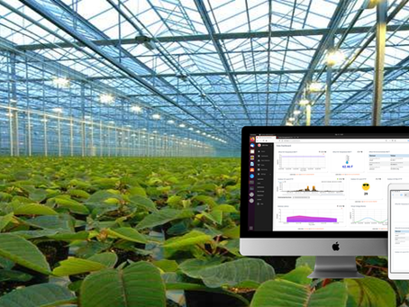 Optimizing Greenhouse Operations with IoT