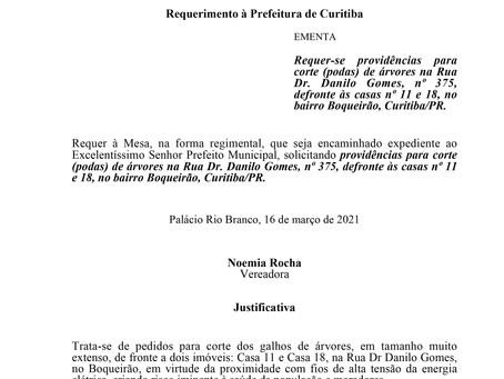 Providências para corte de árvores na Rua Dr. Danilo Gomes