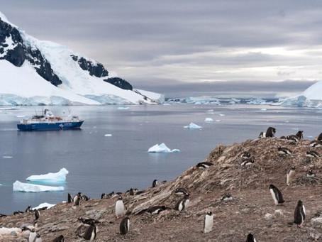 Descubra 15 curiosidades sobre a Antártida que vão surpreender você