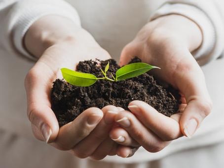 Confira 10 boas práticas ambientais para aplicar em sua empresa