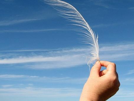 Parábolas: Penas ao vento